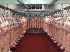 Meat Rail
